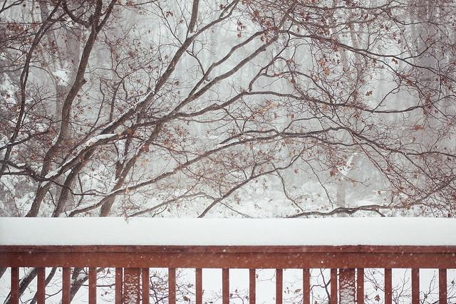 dreamy snowy day