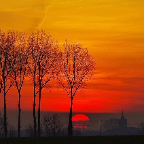 #sunrise #zonsopgang #beauvoorde #alveringem #sun