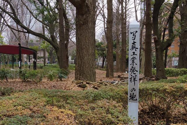 2016年3月13日新宿中央公園-3