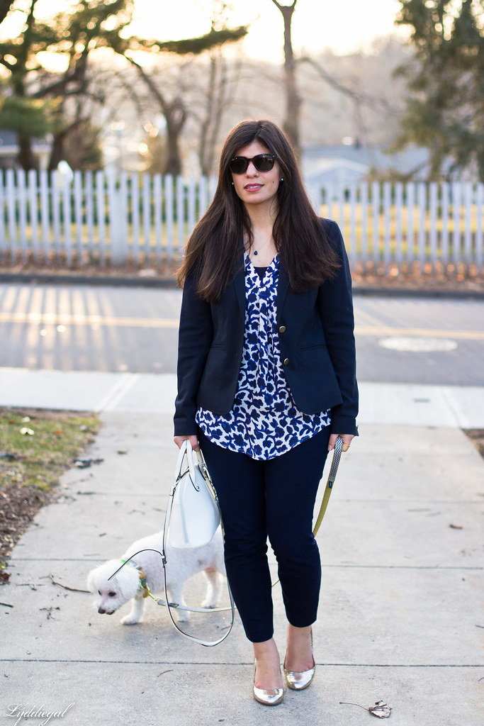 blue and white silk floral blouse, navy pants and blazer, dog.jpg
