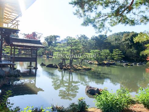 金閣寺鏡湖池松画像