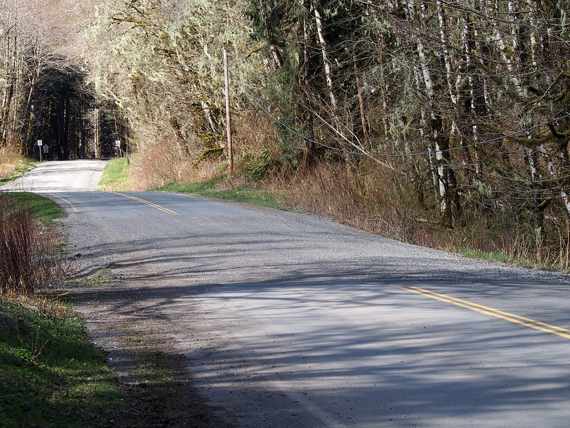 Mountain Loop Highway: Gravel: I wasn't expecting a hardpack section so far below the pass.