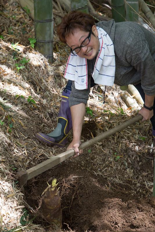 タケノコ掘り-20