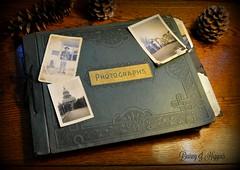 The Green Photographs Album.
