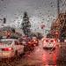 rainy day by Karol Franks