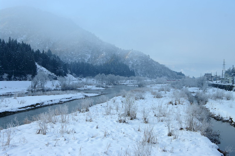 寒い朝_201512