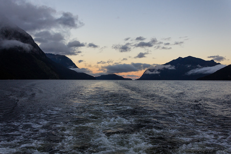 Early Morning in the Fiord