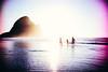 New Zealand Summer by rick0530