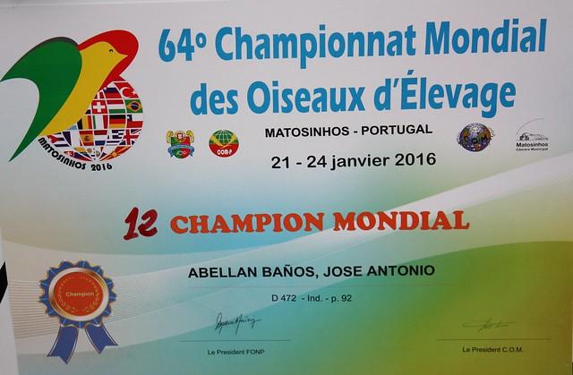 Diploma acreditativo de los 1º premios