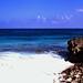 Bahamas 1989 (438) Great Abaco