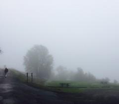 Top Fog
