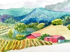 Napa, California. Work in progress. #watercolor #vinology #california