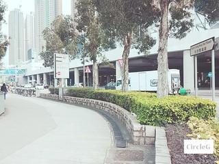 CircleG 遊記 元朗 南生圍 散步 生態遊 一天遊 香港 (113)