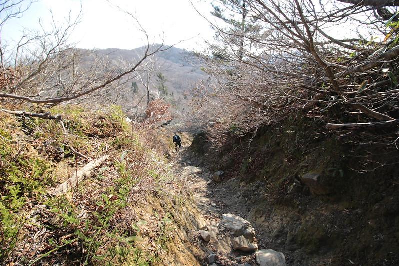 20141122-武奈ヶ岳&京都ライトアップ-0334.jpg