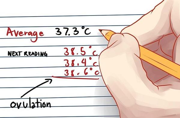 Xác định ngày rụng trứng dựa vào thân nhiệt 3