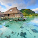 Overwater Bungalows at the Hilton Moorea by ramsey ksar photography