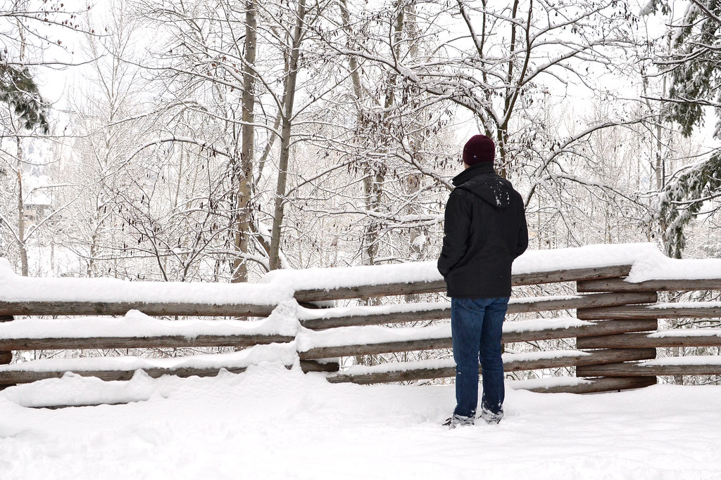 Looking out at the snow