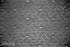 Petri 28mm f/2.8 C.C Auto (M42)
