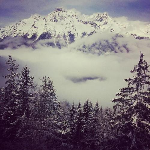 Sneeuwige dag vandaag 💖 #postkaart #sprookjeslandschap #bloemsuiker