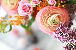 L'Oréal Paris Color Riche A L'Huile Flowers