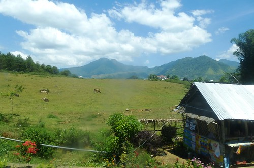 P16-Negros-Bacolod-San Carlos-route (34)