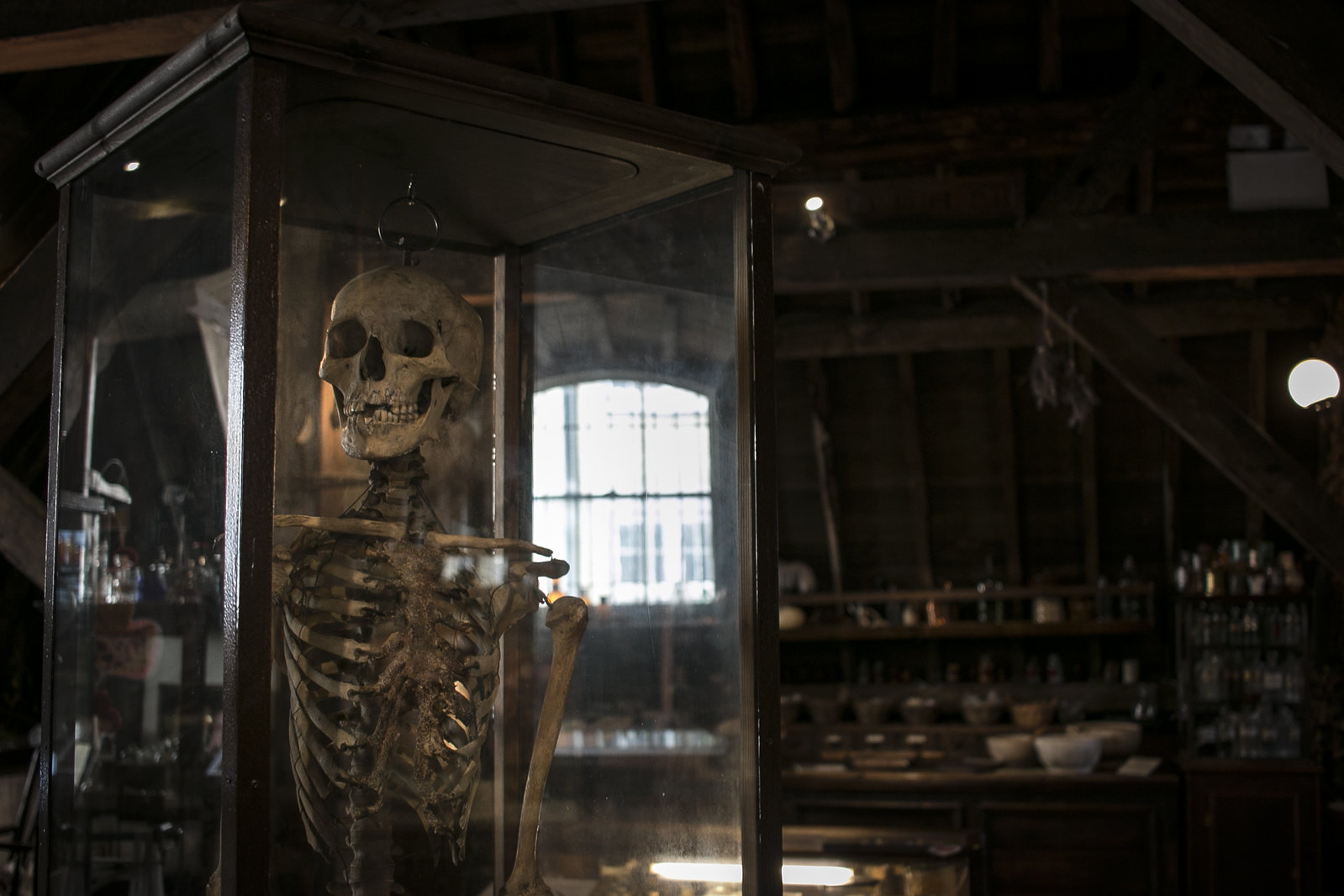 the old operating theatre, cabinet of curiosities, old medical instruments, herb garret, human skeleton
