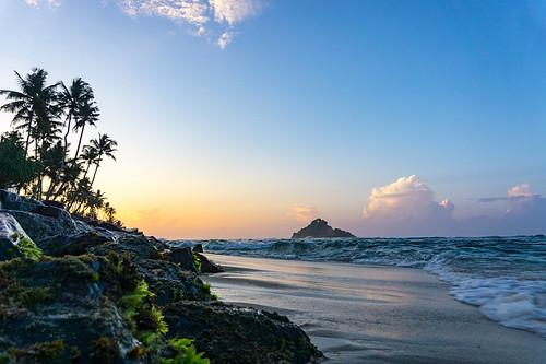 ocean morning travel trees sea summer seascape beach clouds sunrise island sand rocks coconut sony sri lanka srilanka lk southernprovince a6000