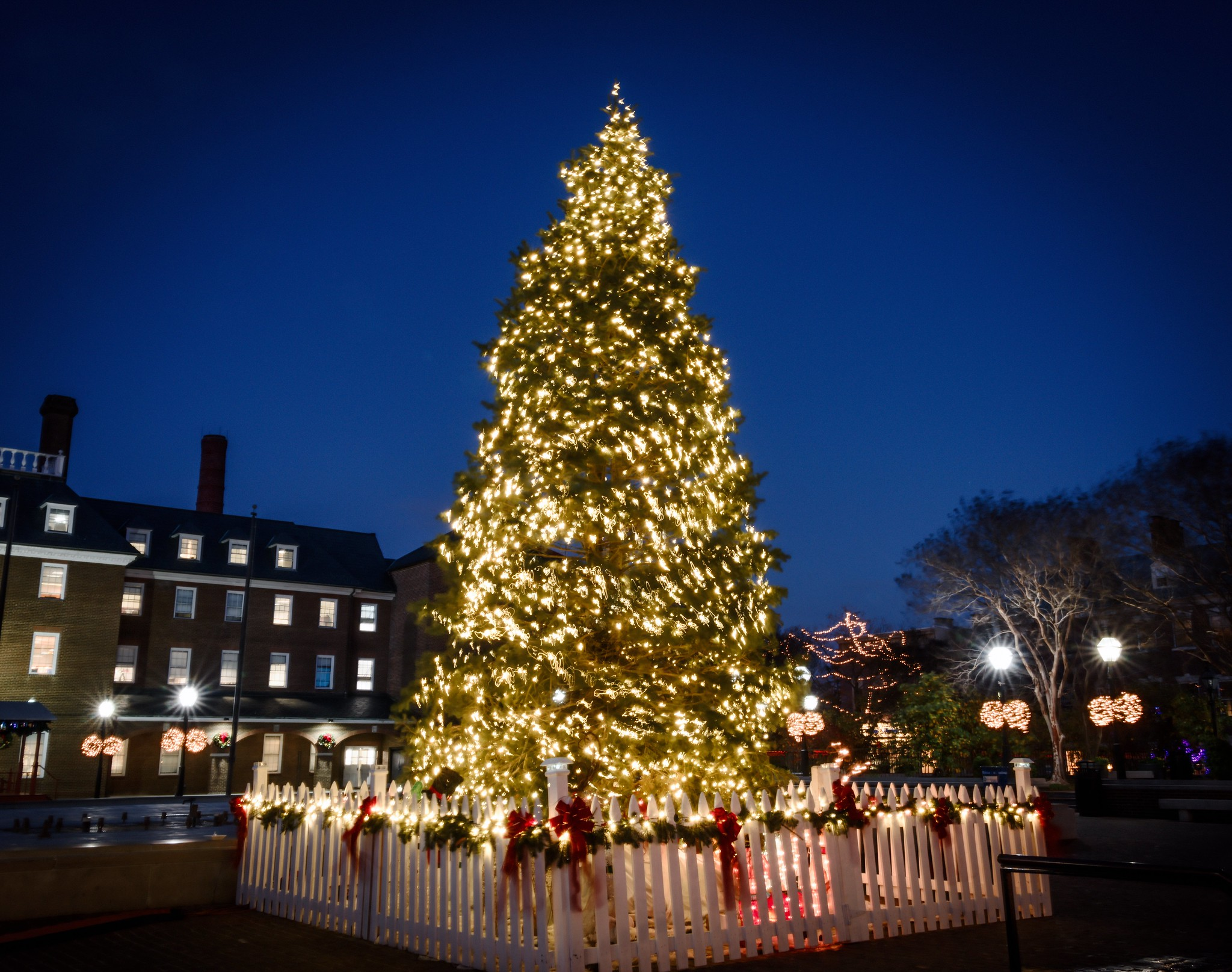 Silent Night, Windy Night