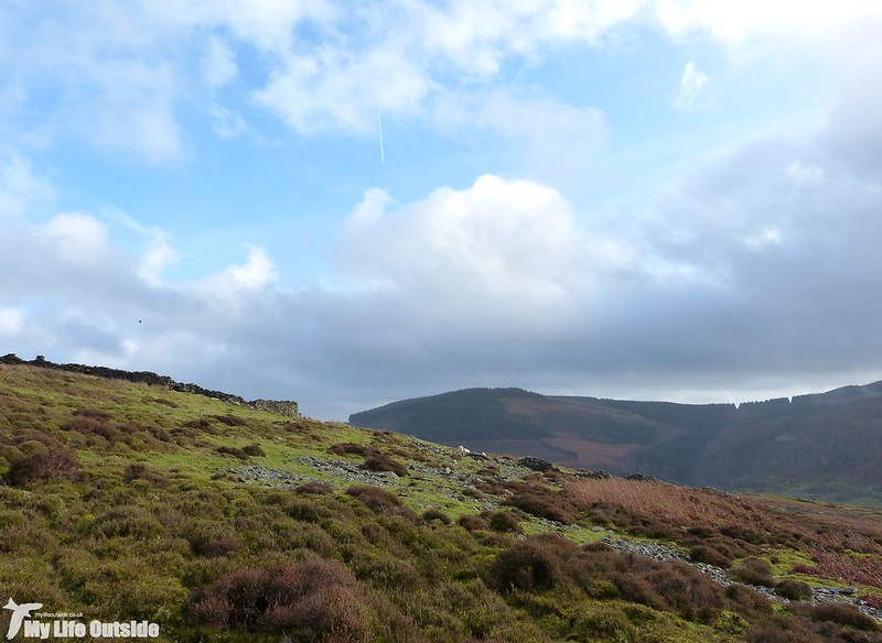 P1160891 - Above Aberdare