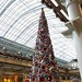 The St. Pancras International 2015 Tree
