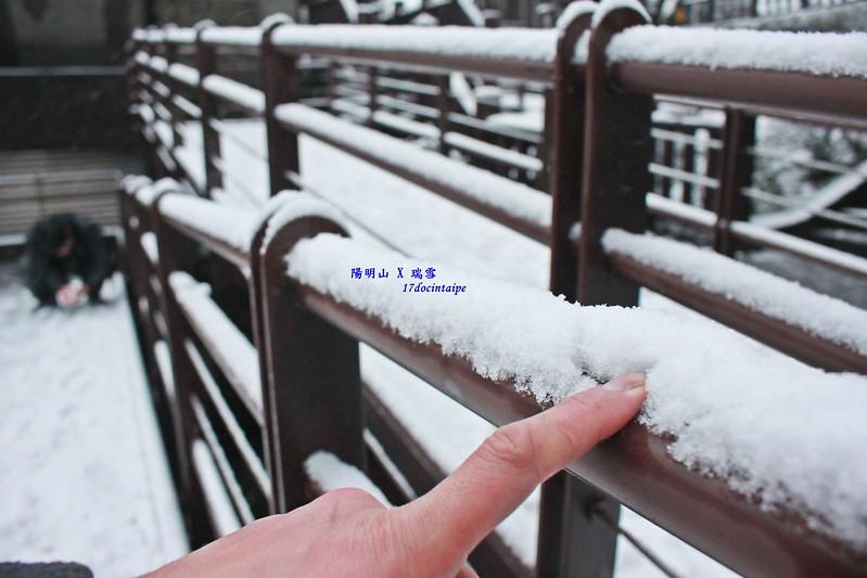2016-台北陽明山-瑞雪-難得一見的雪白山景-17度C隨拍 (51)