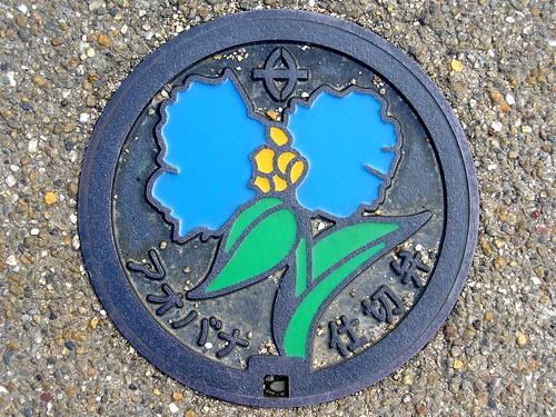 Kusatsu Shiga, manhole cover 6 (滋賀県草津市のマンホール6)