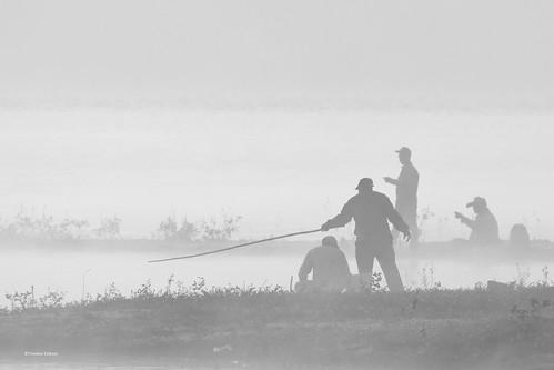 Pescadores de sueños (2)