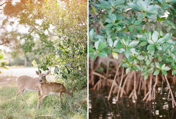 RYALE_Florida_Keys-010