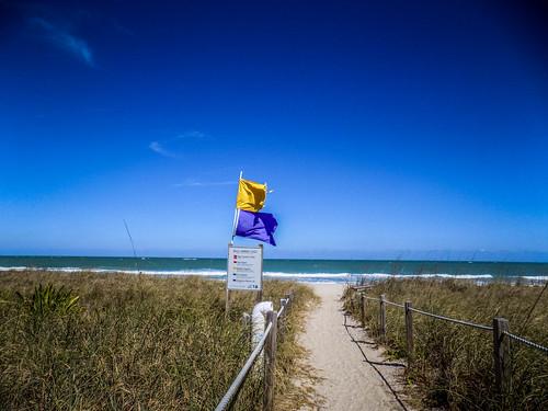 Avalon Beach-004