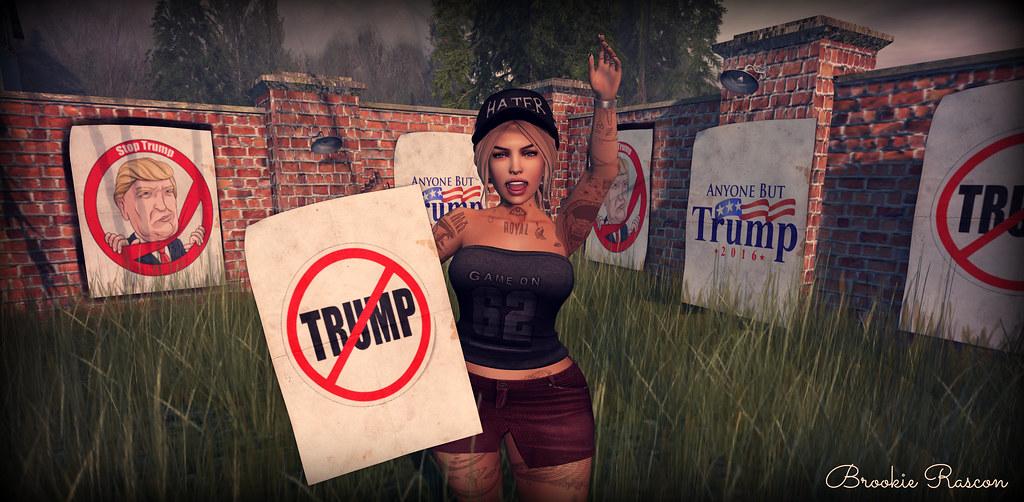Trump Protest ;D