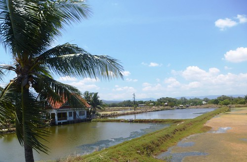 P16-Negros-San Carlos-Dumaguete-Route (47)