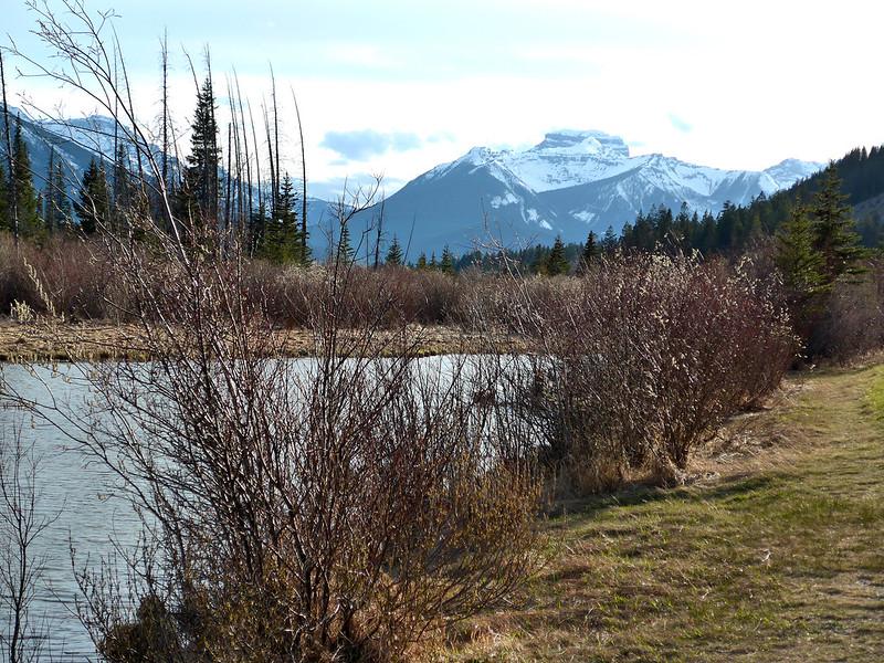 Vermilion Lakes, Alberta