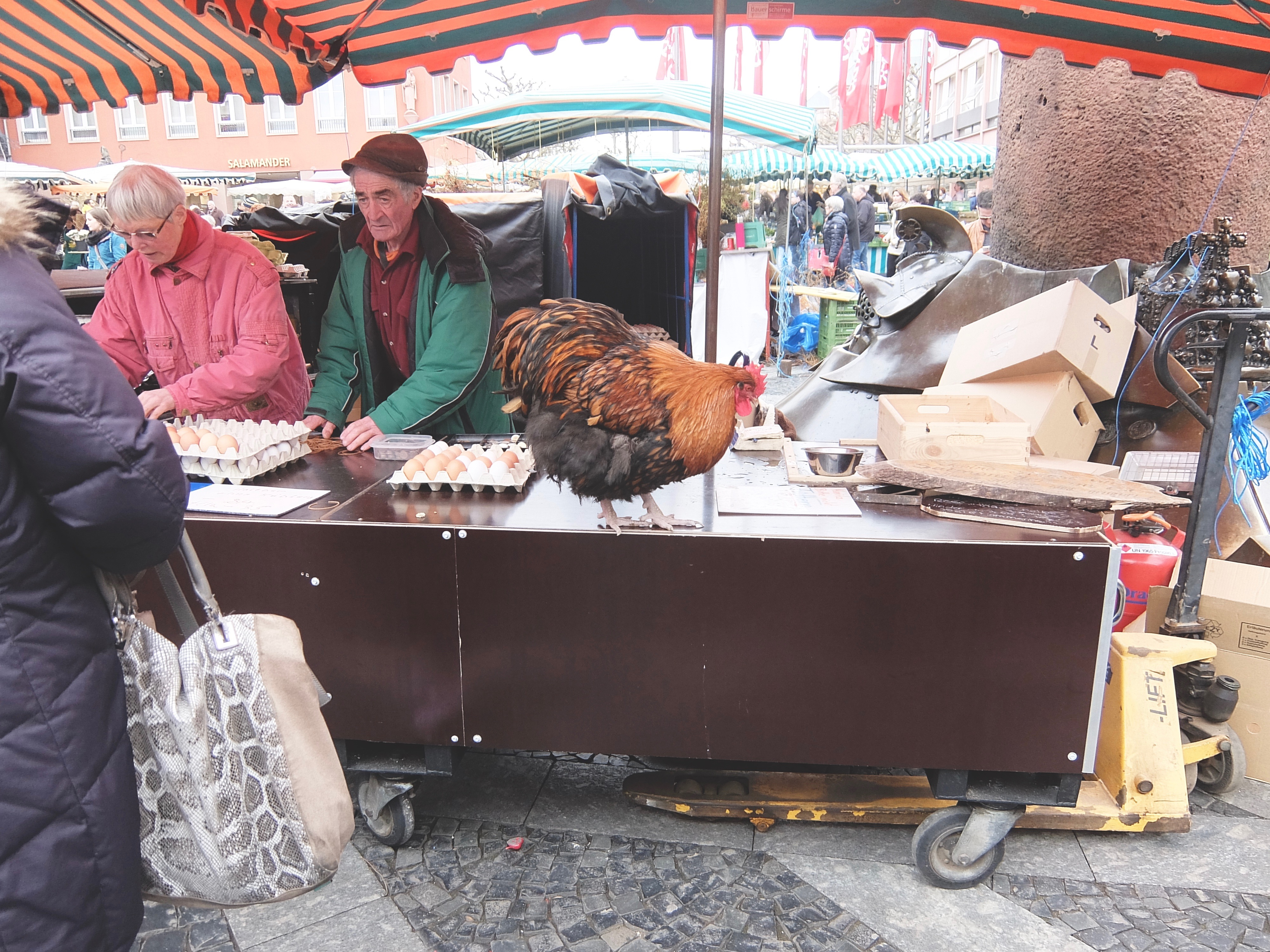 Year Abroad Blog Post | www.hannahemilylane.com