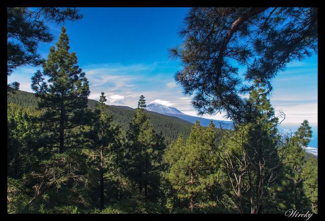 Tenerife Parque Nacional Teide Valle la Orotava - Mirador de Ortuño