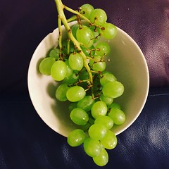 Grapes - Free For Commercial Use - FFCU