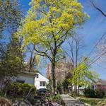 Edgewater Colony, New Jersey