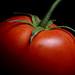 Tomato by Hikotec