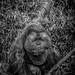 Orangutan by Rick Takagi