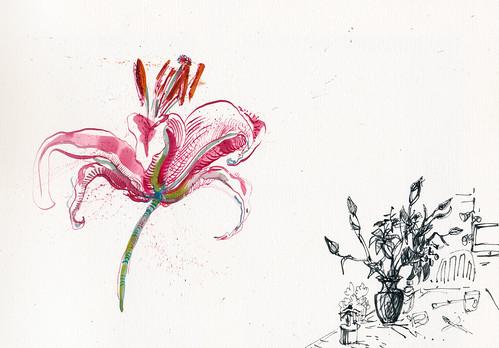 Sketchbook #94: Lilies