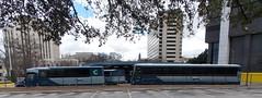 Greyhound Busses---Birmingham, Al.