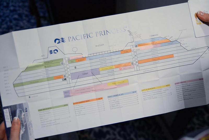 Pacific Princess Programmatic Section