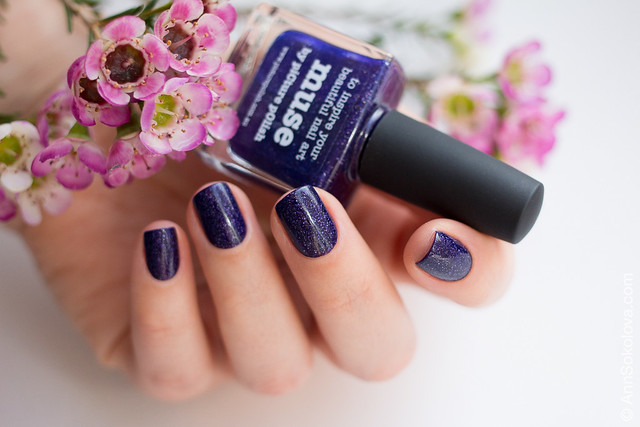 04 Picture Polish Muse Ann Sokolova swatches