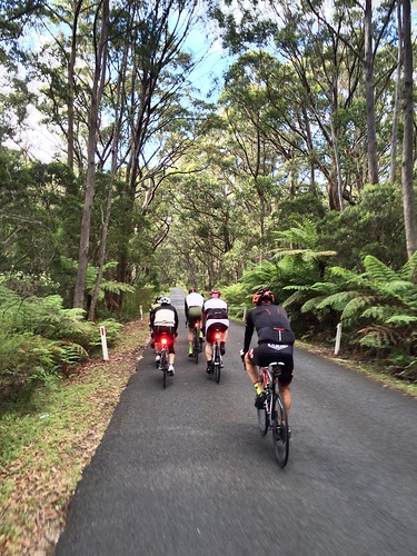 Tourist Road #roadcycling #ridethehighlands