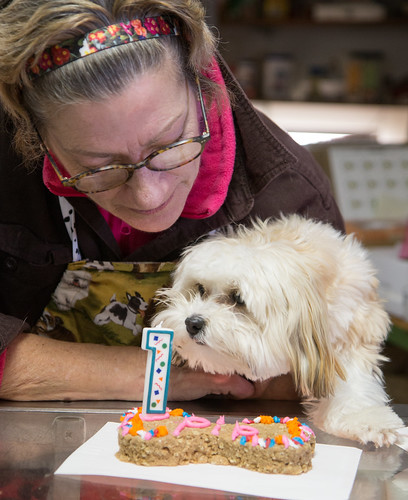 Joanne Elliott of Matilda's Dog Bakery with a special treat for Pip!!